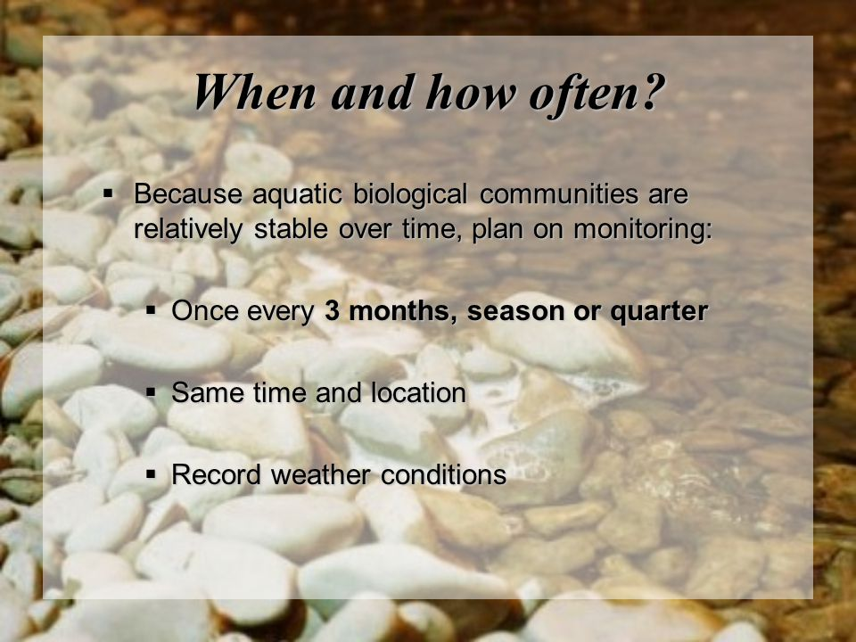 When and how often?  Because aquatic biological communities are relatively stable over time, plan on monitoring:  Once every 3 months, season or qua