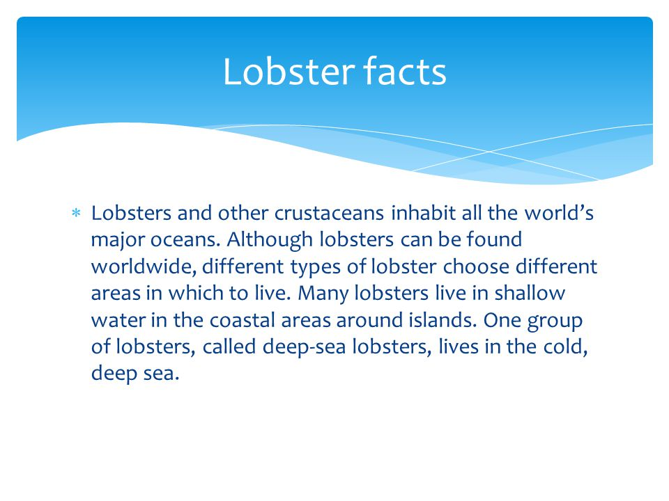  Lobsters and other crustaceans inhabit all the world's major oceans. Although lobsters can be found worldwide, different types of lobster choose dif