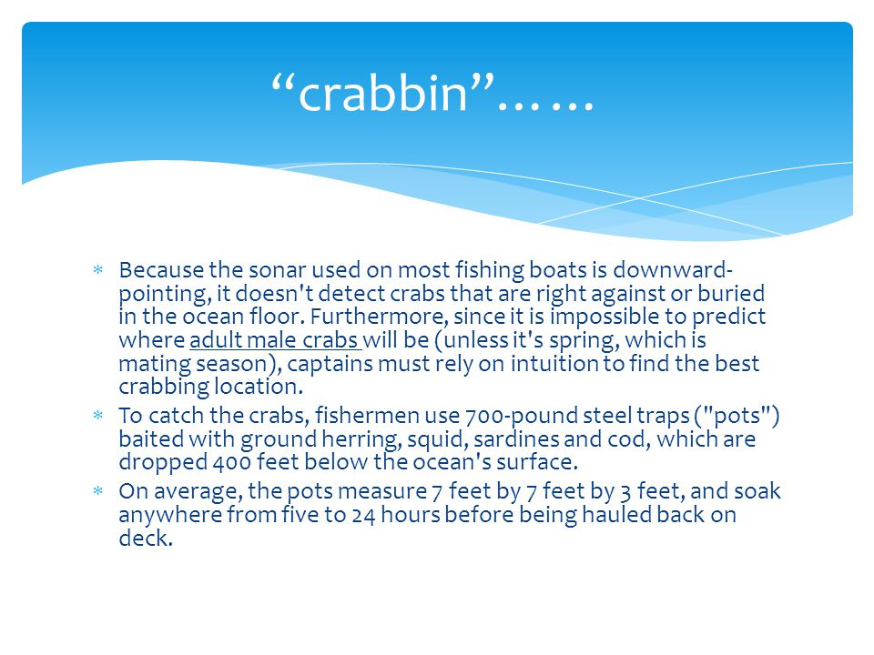  Because the sonar used on most fishing boats is downward- pointing, it doesn't detect crabs that are right against or buried in the ocean floor. Fur