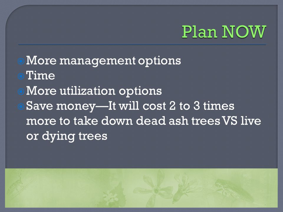  More management options  Time  More utilization options  Save money—It will cost 2 to 3 times more to take down dead ash trees VS live or dying t