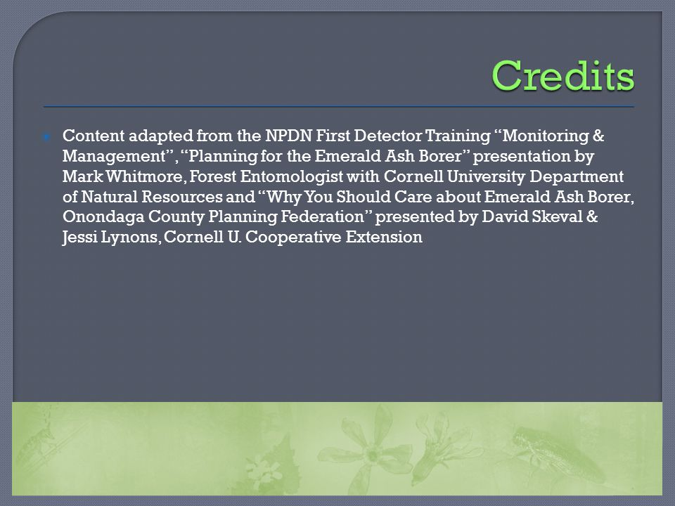 " Content adapted from the NPDN First Detector Training ""Monitoring & Management"", ""Planning for the Emerald Ash Borer"" presentation by Mark Whitmore,"