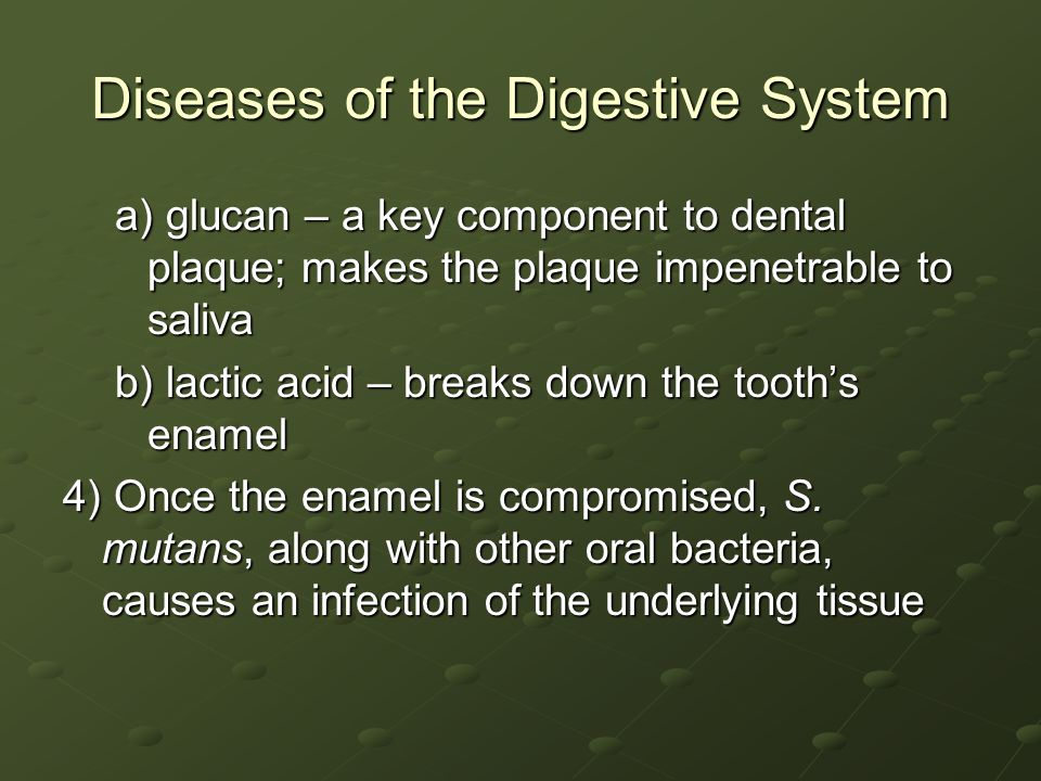 Diseases of the Digestive System a) glucan – a key component to dental plaque; makes the plaque impenetrable to saliva b) lactic acid – breaks down the tooth's enamel 4) Once the enamel is compromised, S.