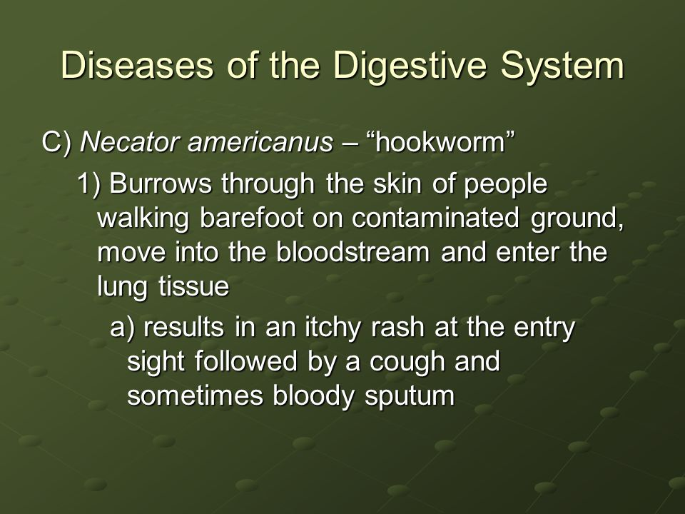 Diseases of the Digestive System C) Necator americanus – hookworm 1) Burrows through the skin of people walking barefoot on contaminated ground, move into the bloodstream and enter the lung tissue a) results in an itchy rash at the entry sight followed by a cough and sometimes bloody sputum