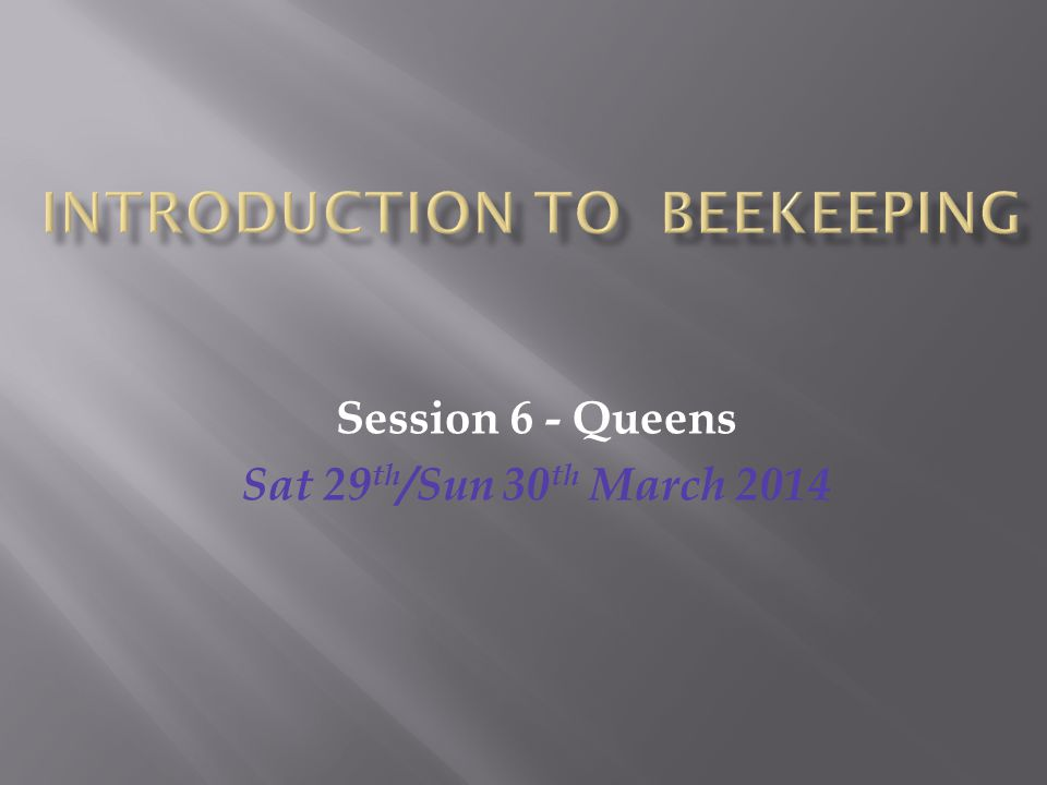 Session 6 - Queens Sat 29 th /Sun 30 th March 2014