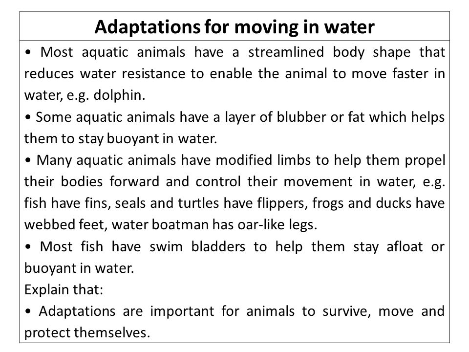 Adaptations for moving in water Most aquatic animals have a streamlined body shape that reduces water resistance to enable the animal to move faster in water, e.g.