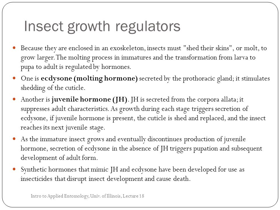 Insect growth regulators Because they are enclosed in an exoskeleton, insects must