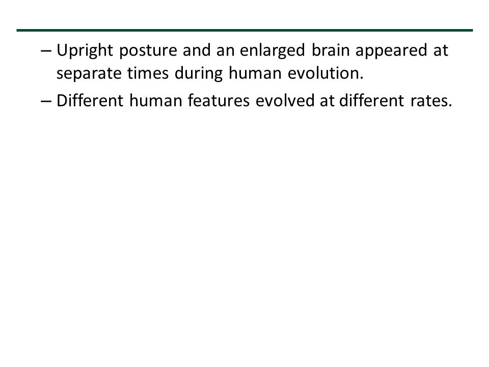 – Upright posture and an enlarged brain appeared at separate times during human evolution. – Different human features evolved at different rates.