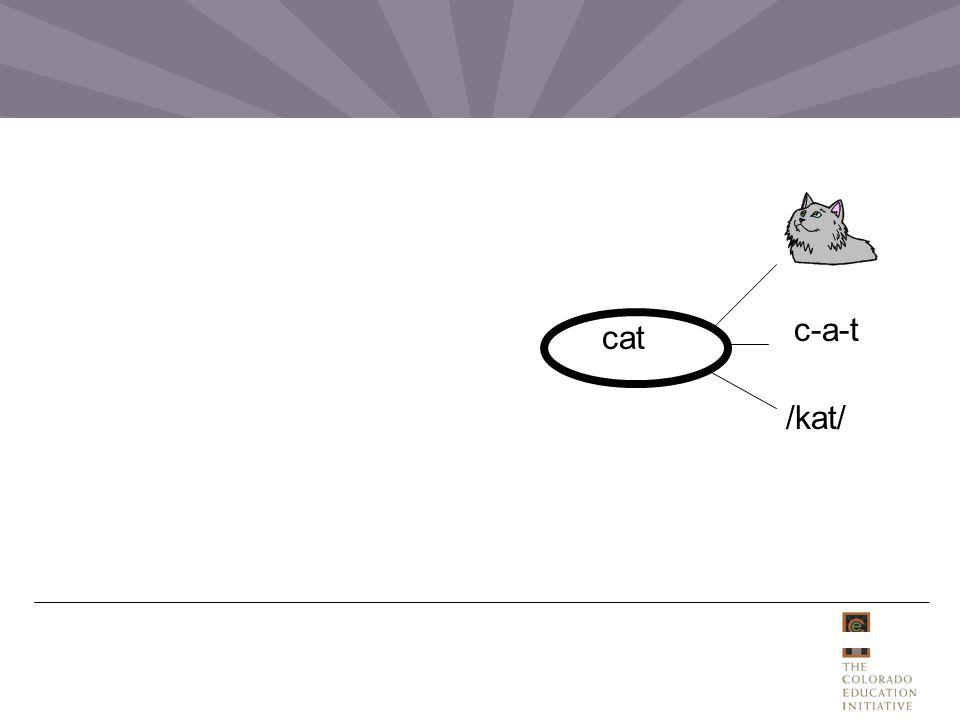/kat/ c-a-t