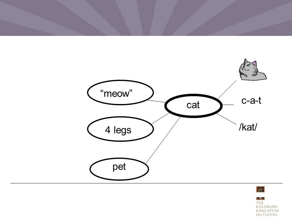 cat /kat/ 4 legs meow c-a-t pet