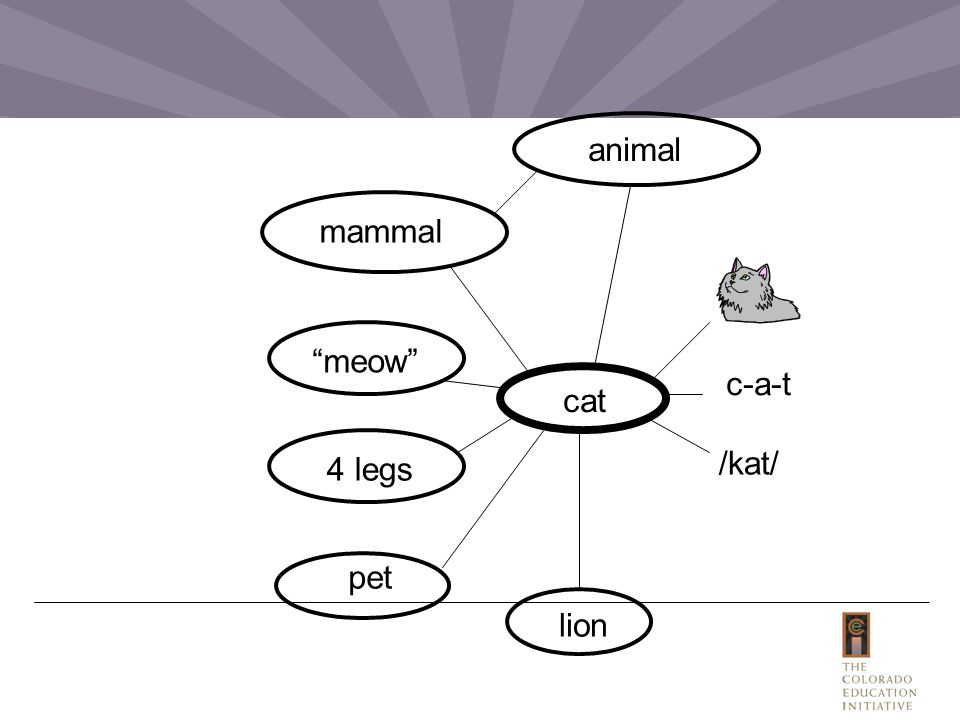 "cat /kat/ mammal 4 legs ""meow"" c-a-t animal pet lion"