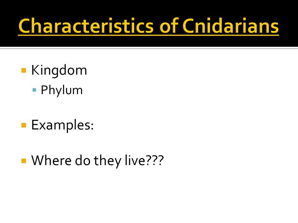  Kingdom  Phylum  Examples:  Where do they live???