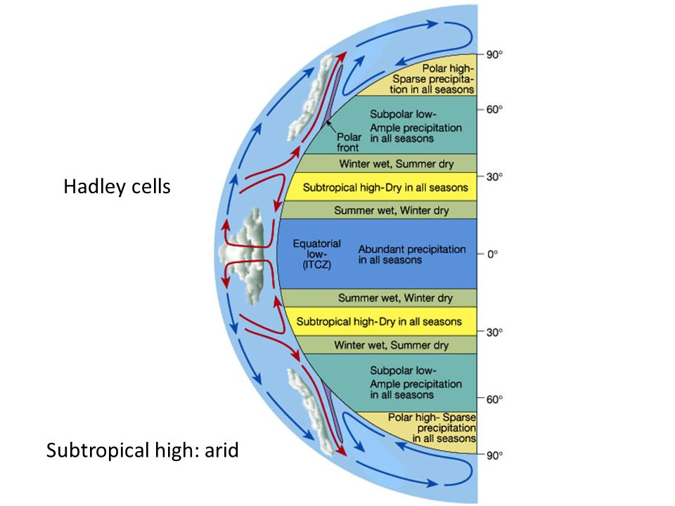 Hadley cells Subtropical high: arid