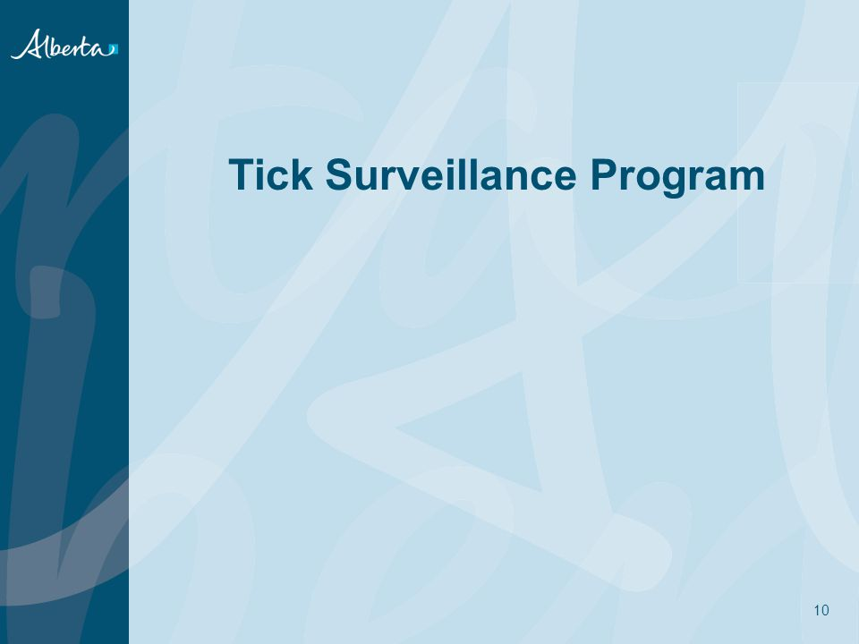 Tick Surveillance Program 10