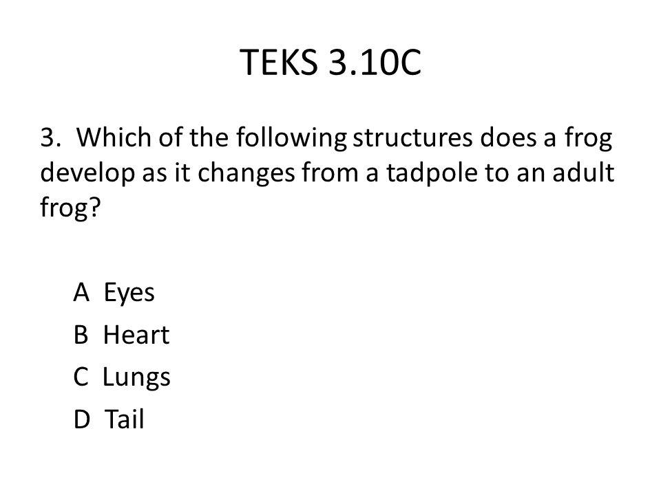 TEKS 3.10C 3.