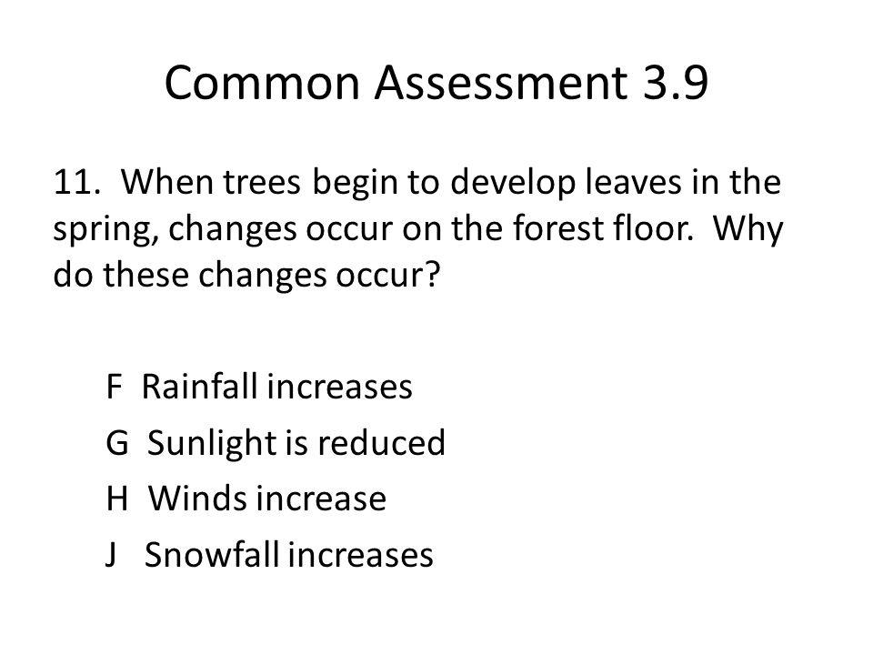 Common Assessment 3.9 11.