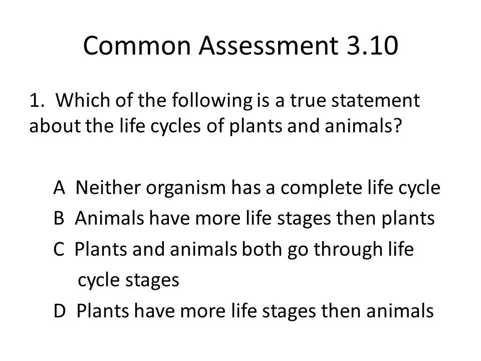 Common Assessment 3.10 1.