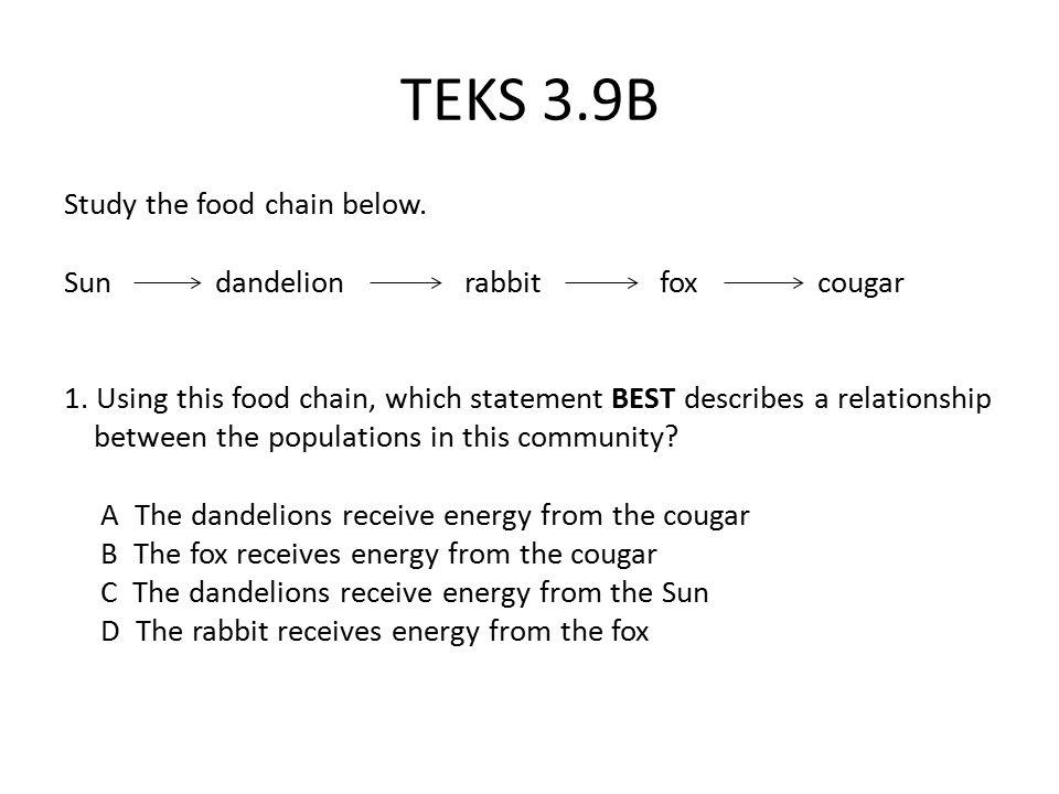 TEKS 3.9B Study the food chain below.Sun dandelion rabbit fox cougar 1.