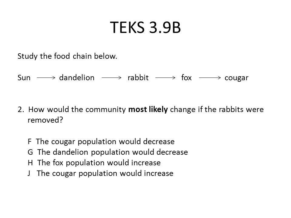 TEKS 3.9B Study the food chain below.Sun dandelion rabbit fox cougar 2.