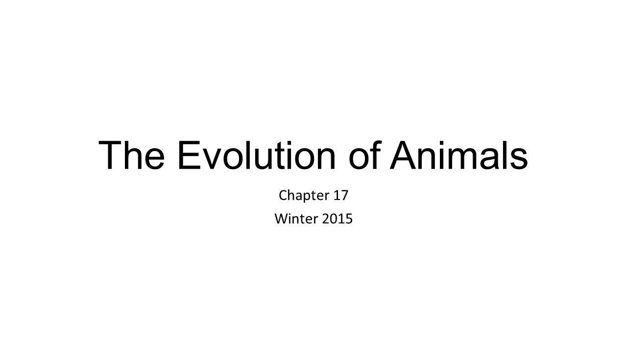 The Evolution of Animals Chapter 17 Winter 2015
