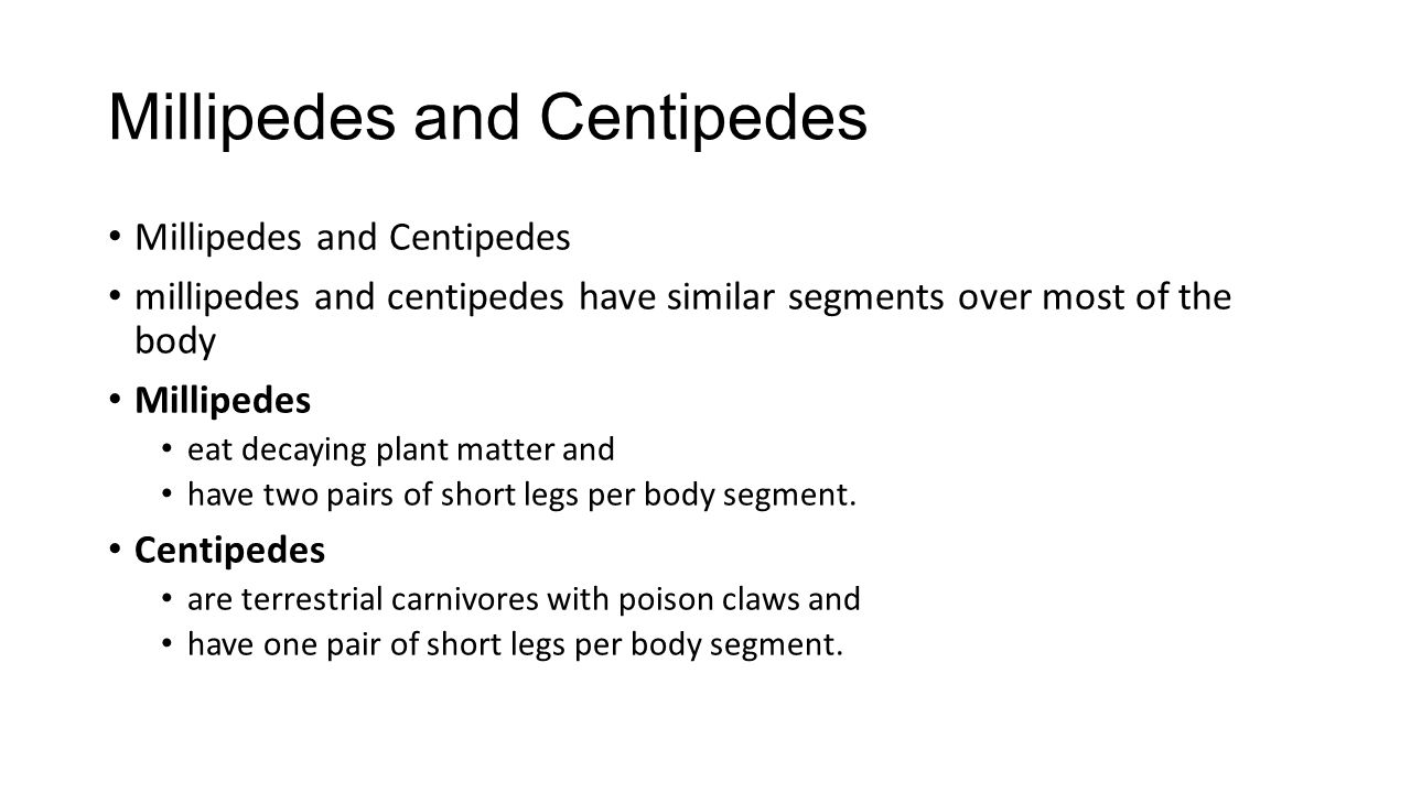 Millipedes and Centipedes millipedes and centipedes have similar segments over most of the body Millipedes eat decaying plant matter and have two pair