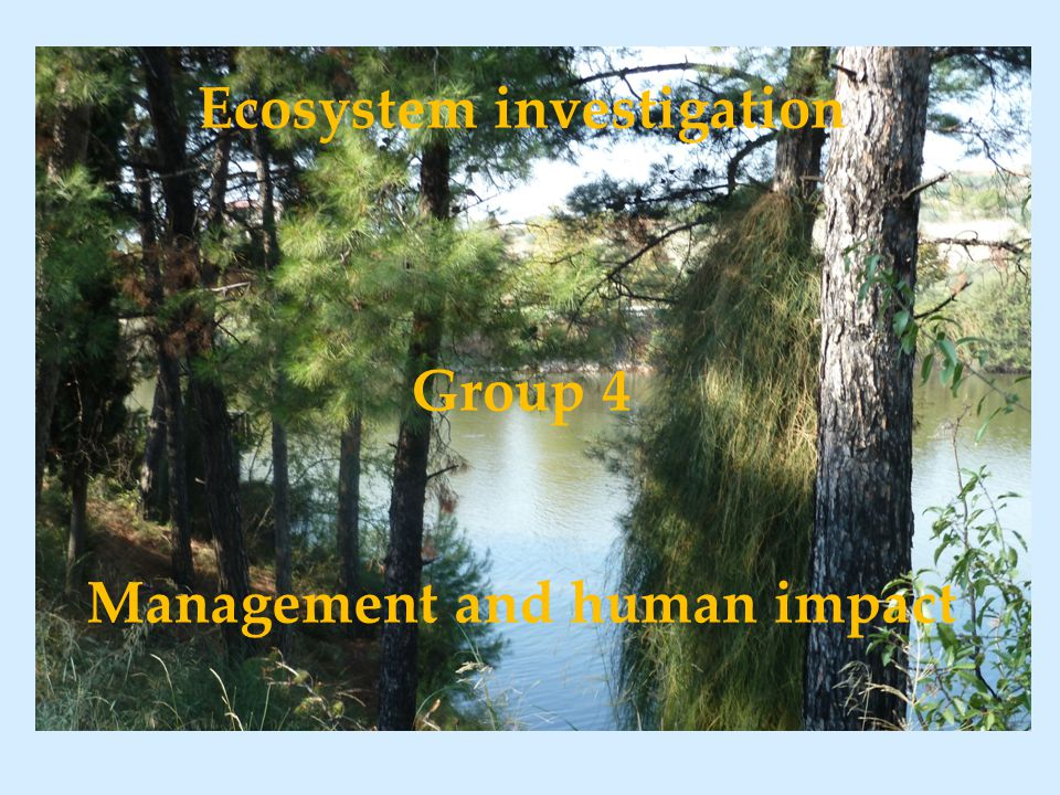 Ecosystem investigation Group 4 Management and human impact
