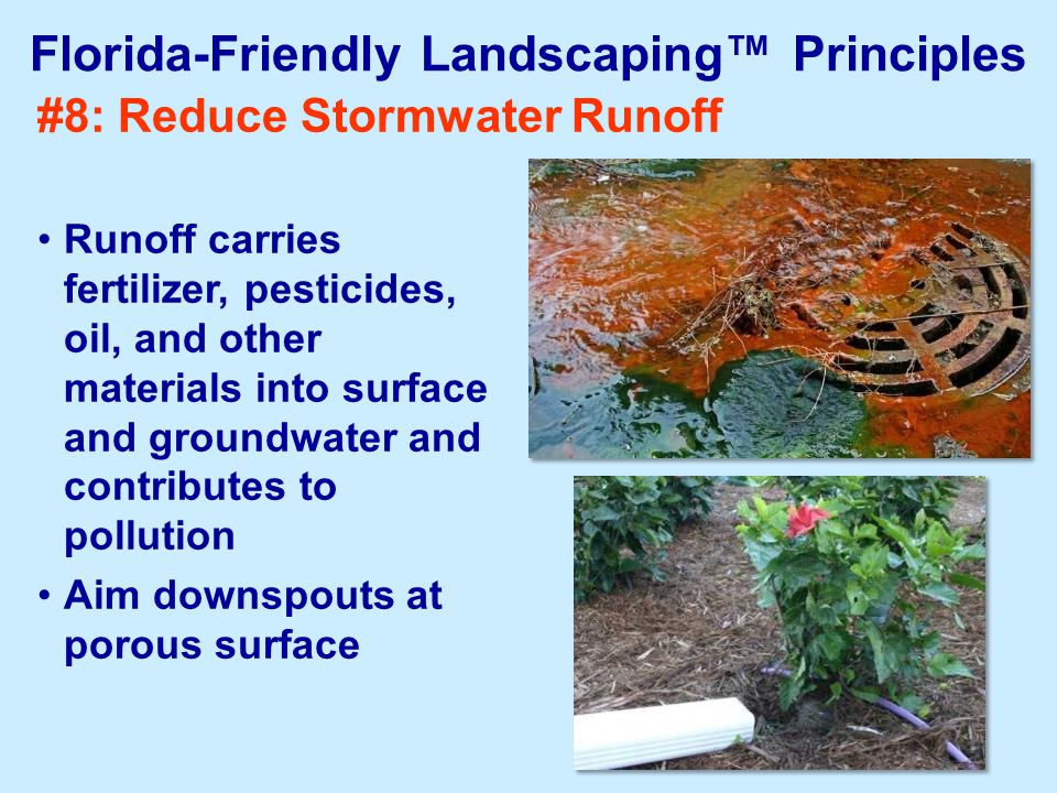 #8: Reduce Stormwater Runoff Runoff carries fertilizer, pesticides, oil, and other materials into surface and groundwater and contributes to pollution Aim downspouts at porous surface Florida-Friendly Landscaping™ Principles