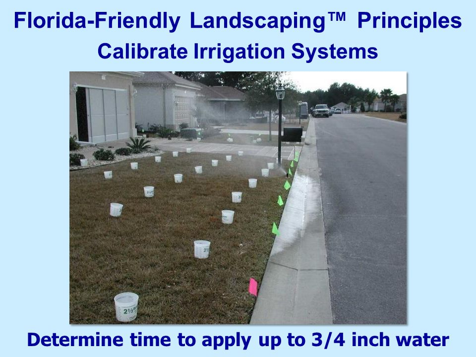 Determine time to apply up to 3/4 inch water Calibrate Irrigation Systems Florida-Friendly Landscaping™ Principles