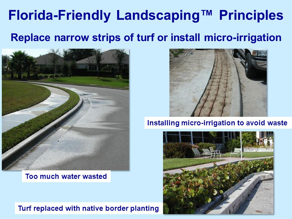 8 Replace narrow strips of turf or install micro-irrigation Florida-Friendly Landscaping™ Principles Too much water wasted Installing micro-irrigation to avoid waste Turf replaced with native border planting
