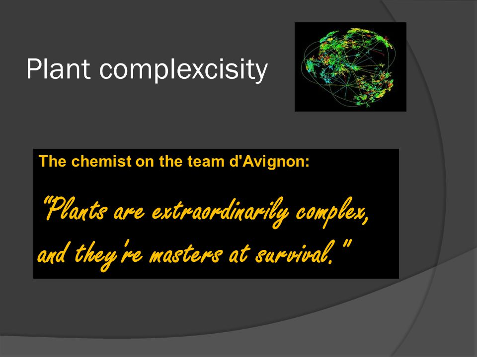 "Plant complexcisity The chemist on the team d'Avignon: ""Plants are extraordinarily complex, and they're masters at survival."