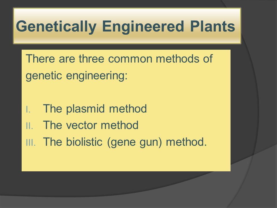 Genetically Engineered Plants There are three common methods of genetic engineering: I. The plasmid method II. The vector method III. The biolistic (g