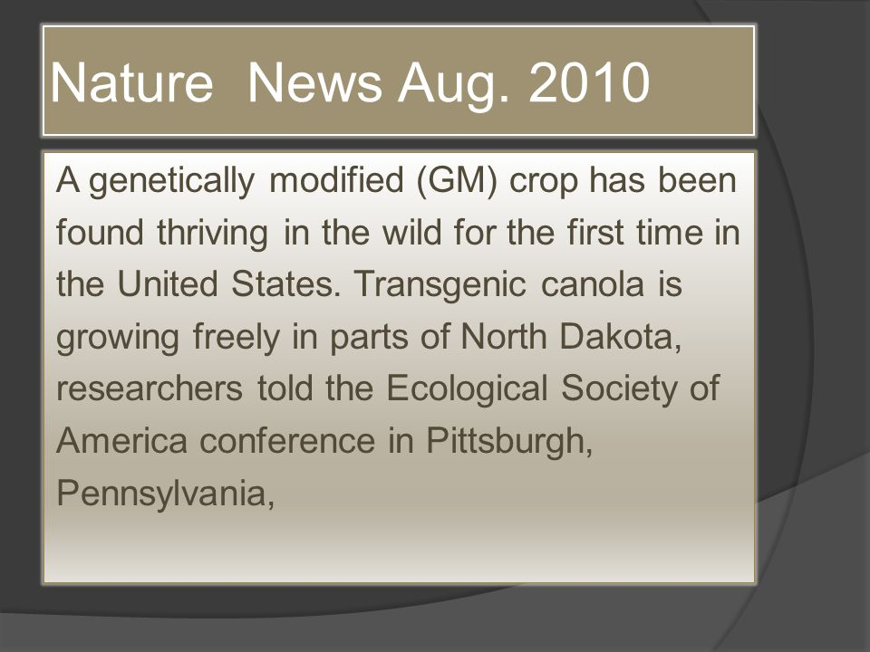 Nature News Aug. 2010 A genetically modified (GM) crop has been found thriving in the wild for the first time in the United States. Transgenic canola