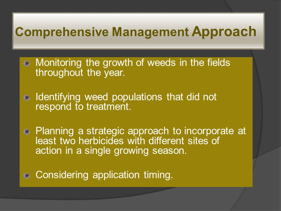 A Strategic Approach - Example Growers can apply herbicides at multiple times during the season:  A burndown + residual herbicide in the spring.