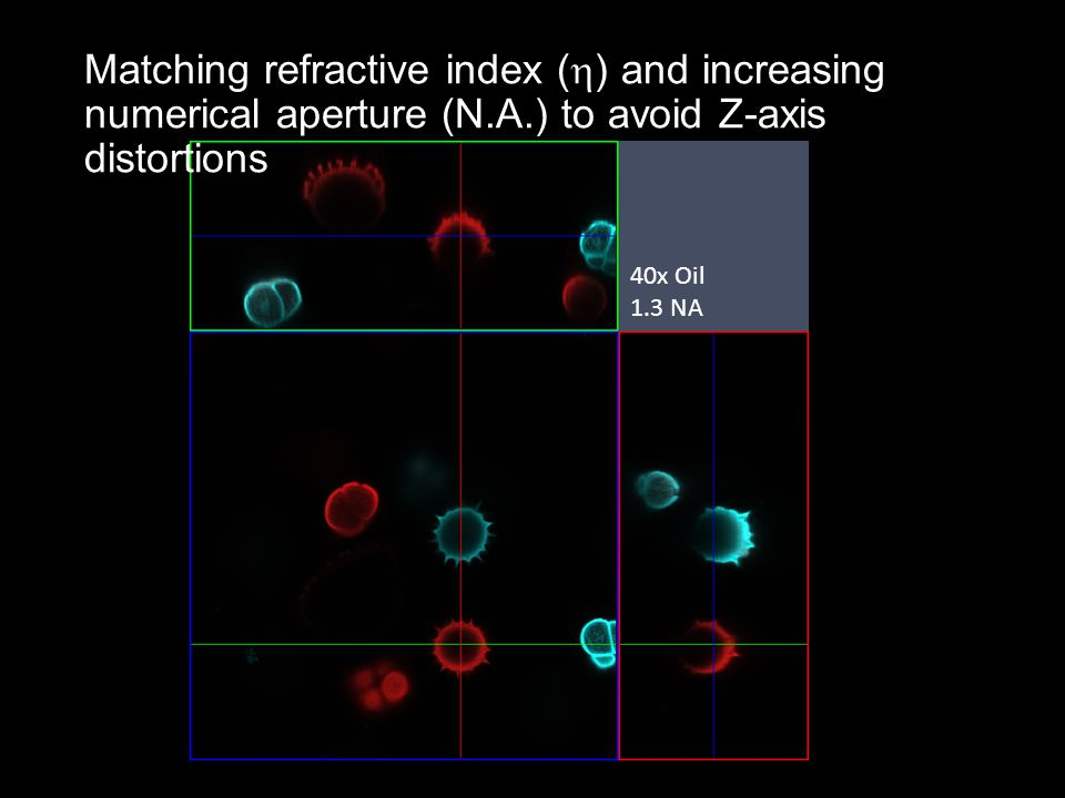 40x Oil 1.3 NA Matching refractive index (  ) and increasing numerical aperture (N.A.) to avoid Z-axis distortions
