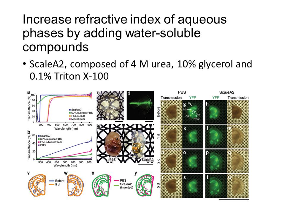 Increase refractive index of aqueous phases by adding water-soluble compounds ScaleA2, composed of 4 M urea, 10% glycerol and 0.1% Triton X-100