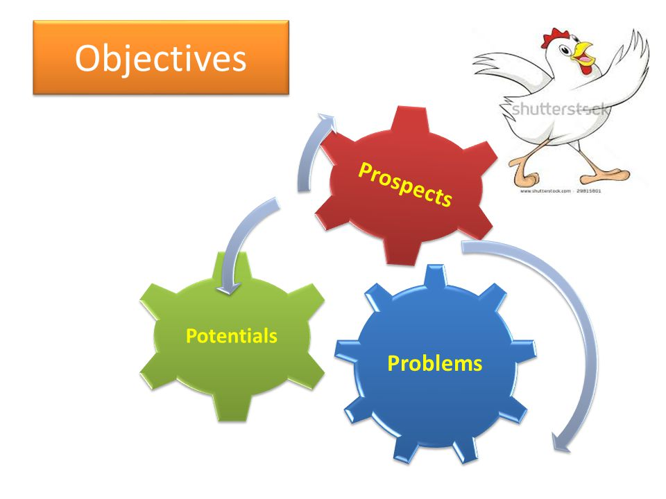 Objectives Problems Potentials Prospects