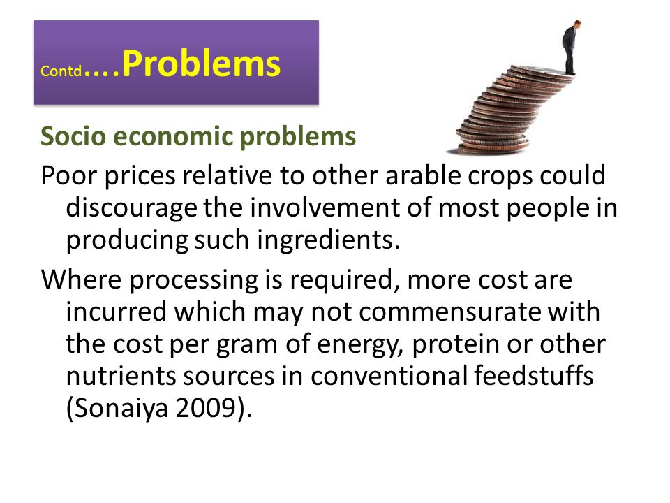 Contd ….Problems Socio economic problems Poor prices relative to other arable crops could discourage the involvement of most people in producing such ingredients.