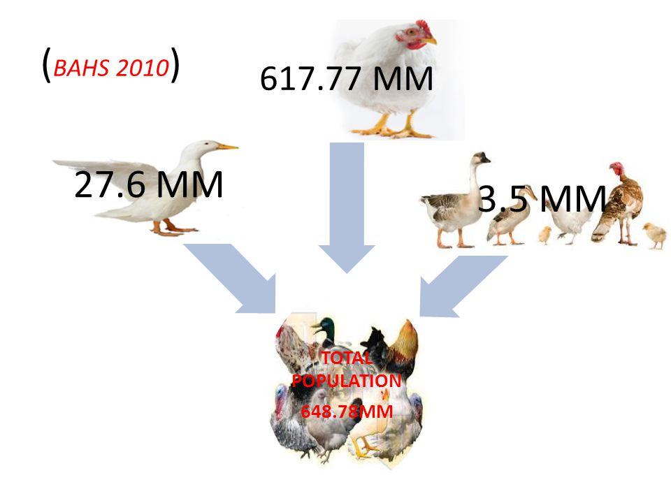 TOTAL POPULATION 648.78MM 27.6 MM 617.77 MM 3.5 MM ( BAHS 2010 )