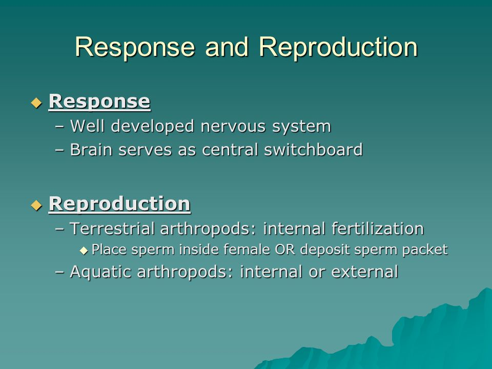 Response and Reproduction  Response –Well developed nervous system –Brain serves as central switchboard  Reproduction –Terrestrial arthropods: inter