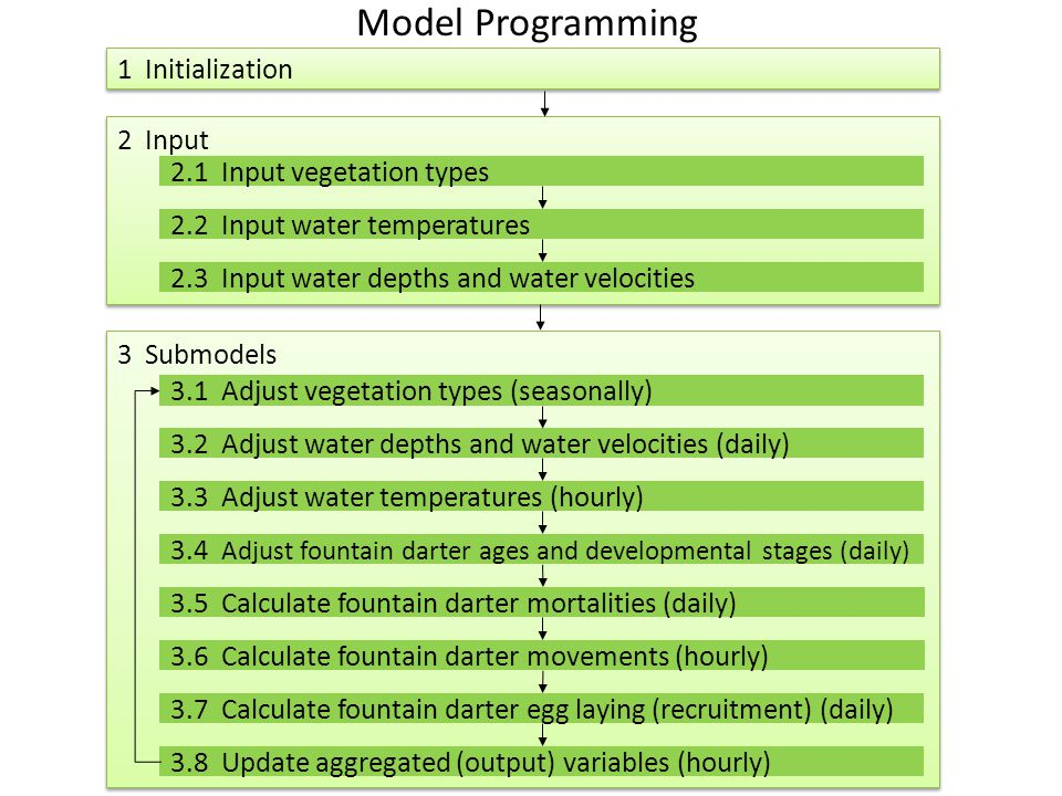 1 Initialization 2 Input 2.1 Input vegetation types 2.2 Input water temperatures 2.3 Input water depths and water velocities 3 Submodels 3.1 Adjust vegetation types (seasonally) 3.2 Adjust water depths and water velocities (daily) 3.3 Adjust water temperatures (hourly) 3.4 Adjust fountain darter ages and developmental stages (daily) 3.7 Calculate fountain darter egg laying (recruitment) (daily) 3.5 Calculate fountain darter mortalities (daily) 3.6 Calculate fountain darter movements (hourly) 3.8 Update aggregated (output) variables (hourly) Model Programming