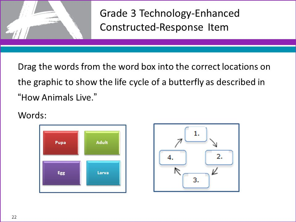 Drag the words from the word box into the correct locations on the graphic to show the life cycle of a butterfly as described in How Animals Live. Words: Grade 3 Technology-Enhanced Constructed-Response Item 22 Pupa Adult Egg Larva