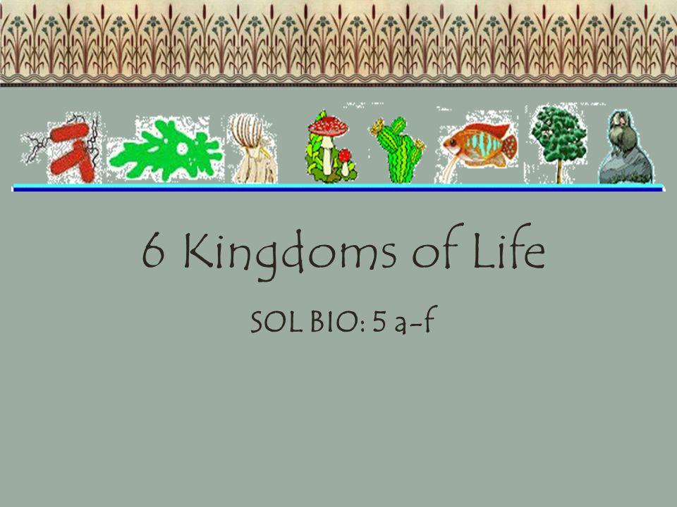 6 Kingdoms of Life SOL BIO: 5 a-f