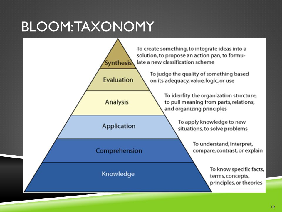 BLOOM: TAXONOMY 19
