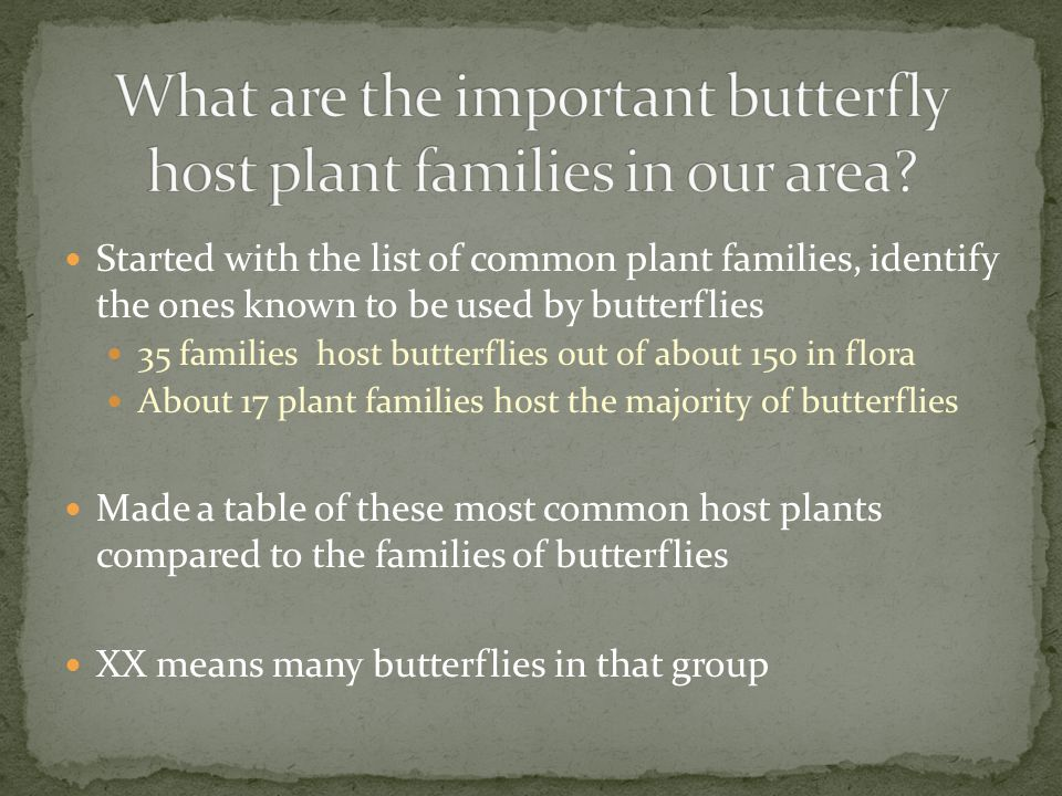 Started with the list of common plant families, identify the ones known to be used by butterflies 35 families host butterflies out of about 150 in flo
