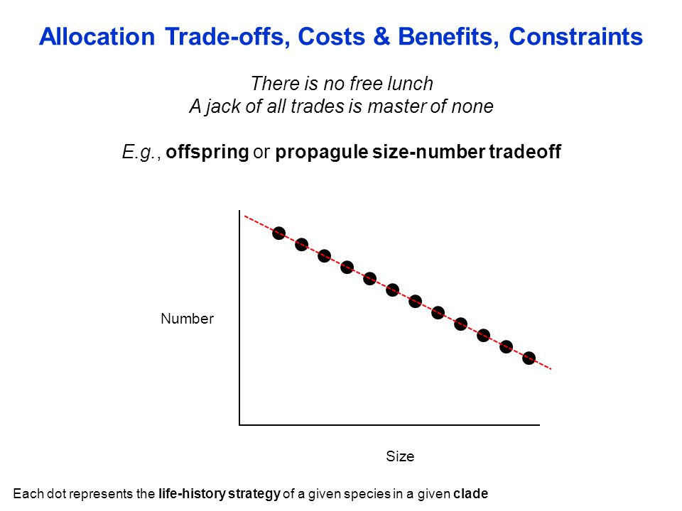 There is no free lunch A jack of all trades is master of none E.g., offspring or propagule size-number tradeoff Allocation Trade-offs, Costs & Benefit
