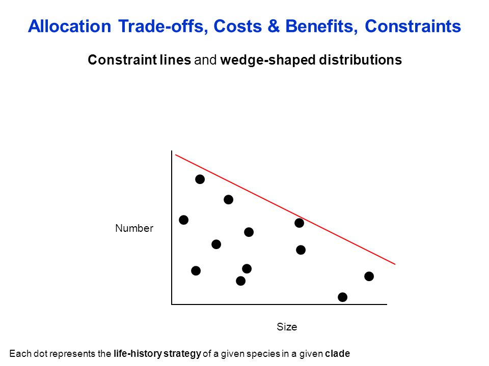 Constraint lines and wedge-shaped distributions Allocation Trade-offs, Costs & Benefits, Constraints Size Number Each dot represents the life-history