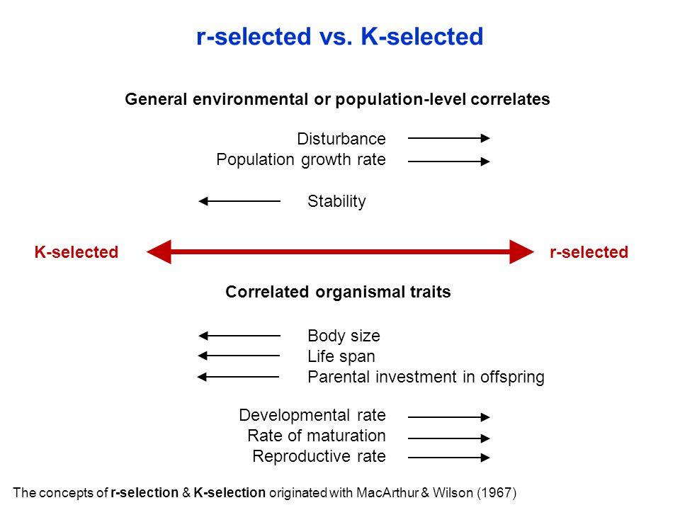 r-selected vs.