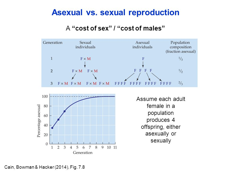 A cost of sex / cost of males Asexual vs.