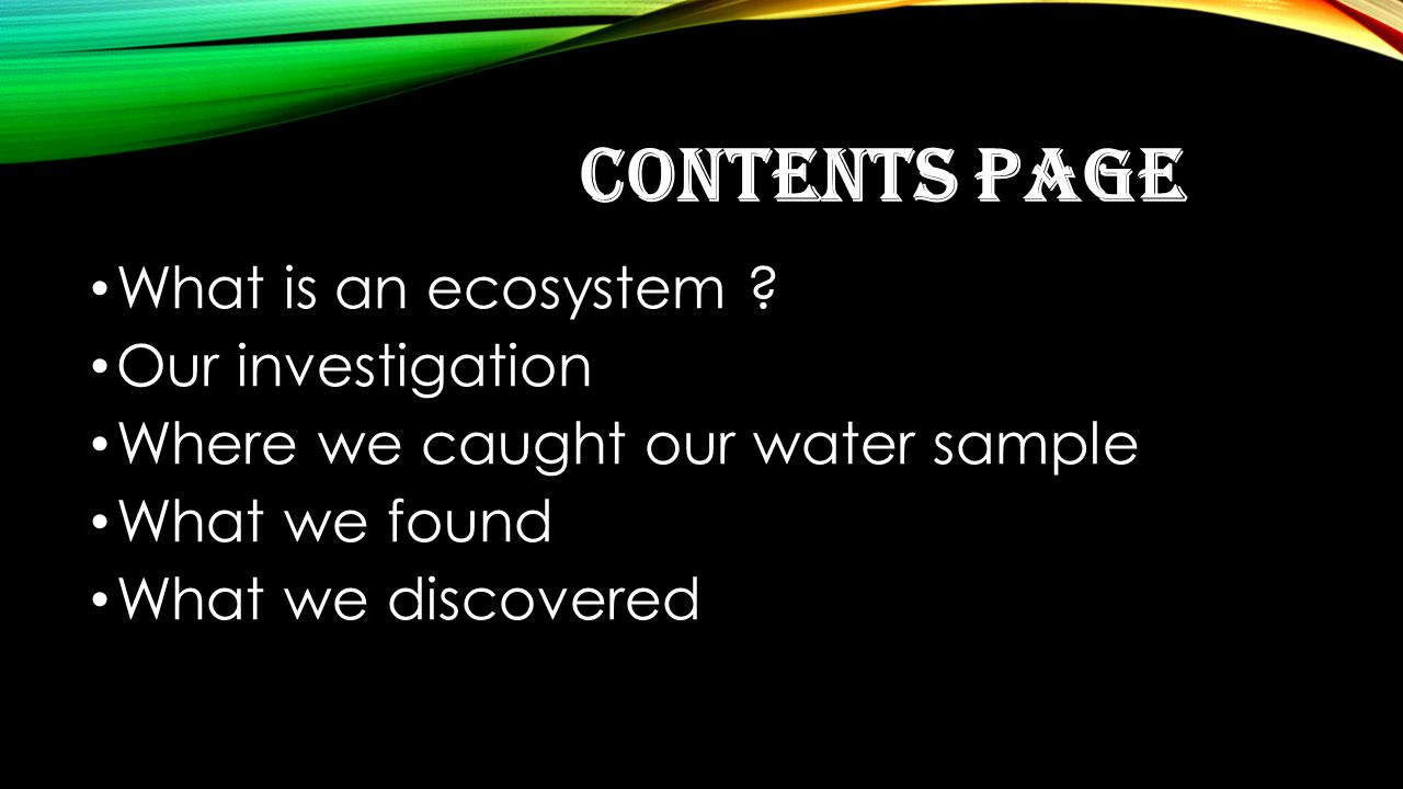 CONTENTS PAGE What is an ecosystem .