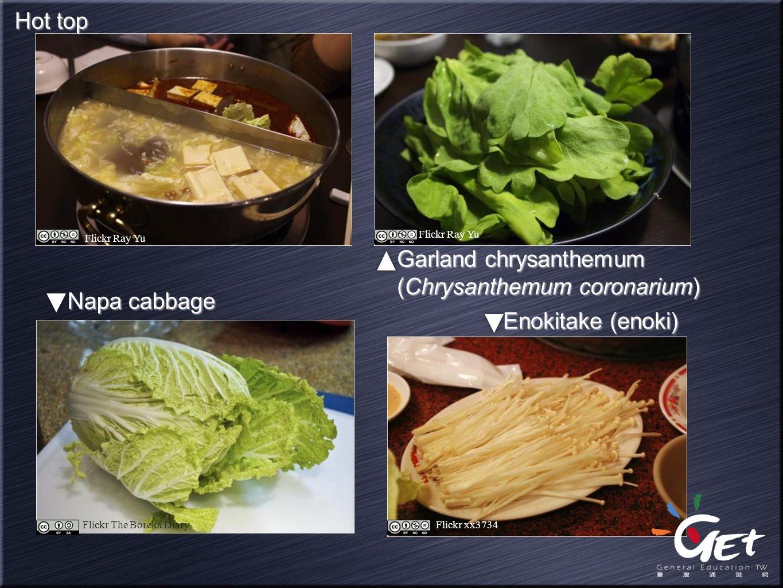 Enokitake (enoki) Garland chrysanthemum (Chrysanthemum coronarium) Napa cabbage Hot top Flickr Ray Yu Flickr The Boreka DiaryFlickr xx3734