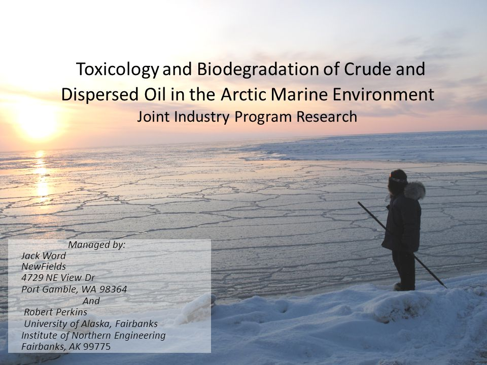 Toxicology and Biodegradation of Crude and Dispersed Oil in the Arctic Marine Environment Joint Industry Program Research Managed by: Jack Word NewFields 4729 NE View Dr Port Gamble, WA 98364 And Robert Perkins University of Alaska, Fairbanks Institute of Northern Engineering Fairbanks, AK 99775